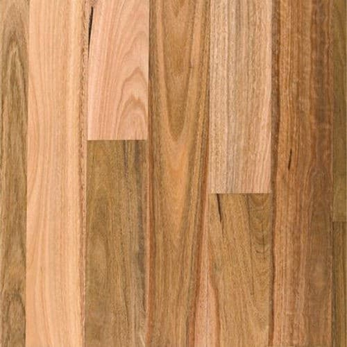 Engineered Flooring Boral Spotted Gum