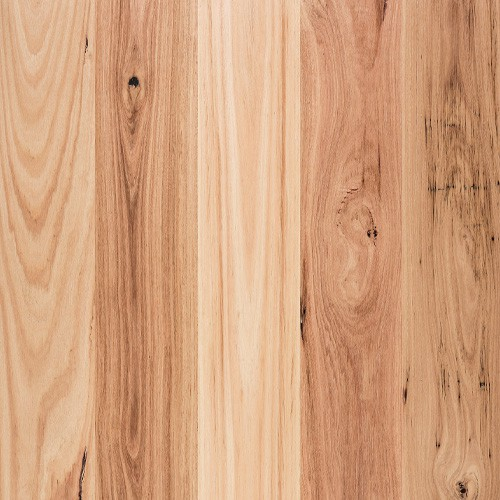 Engineered Flooring Boral Blackbutt Wide & Brushed